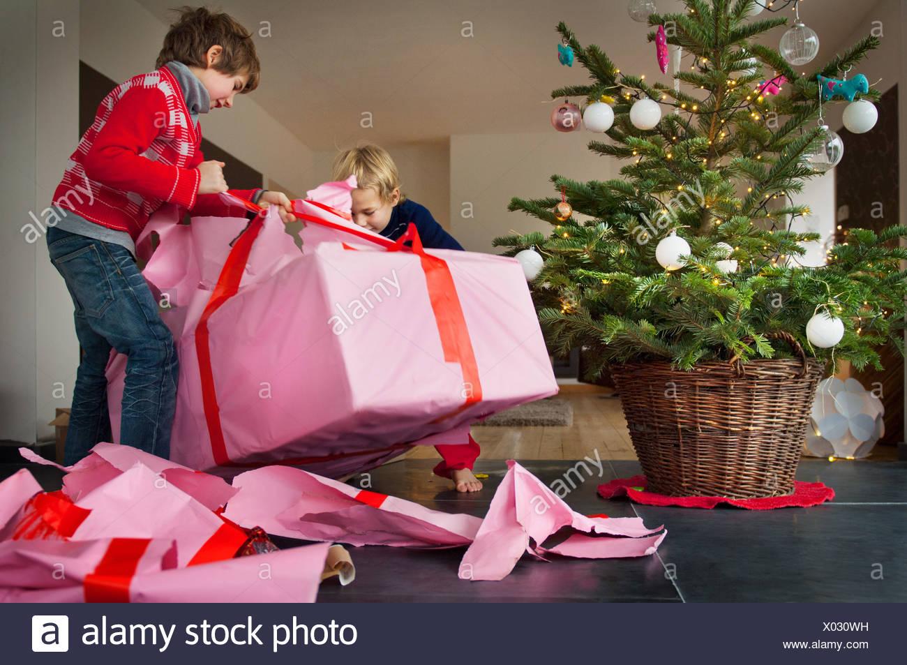 Zwei jungen Weihnachtsgeschenke auspacken Stockfoto, Bild: 275432461 ...