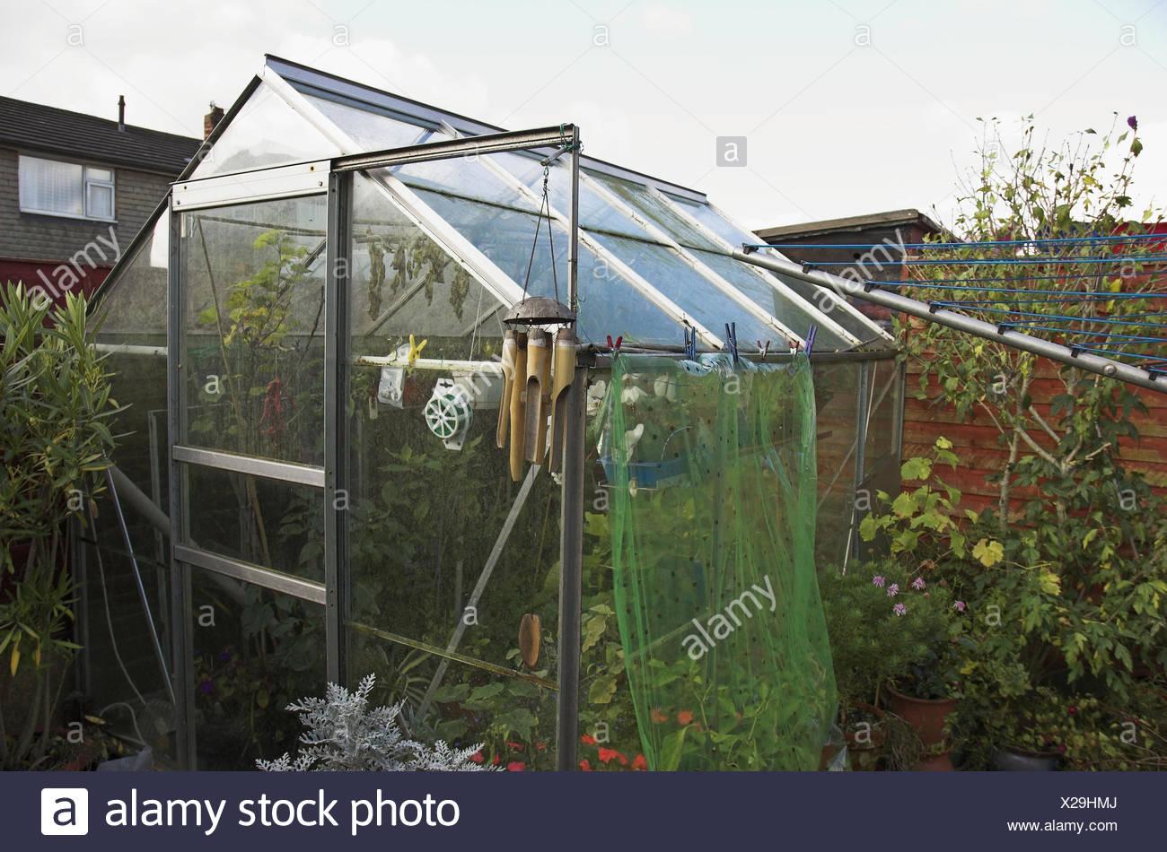 Garten, Gewächshaus, grün, Haus, Glas, Glashaus, Mikro-Klima ...