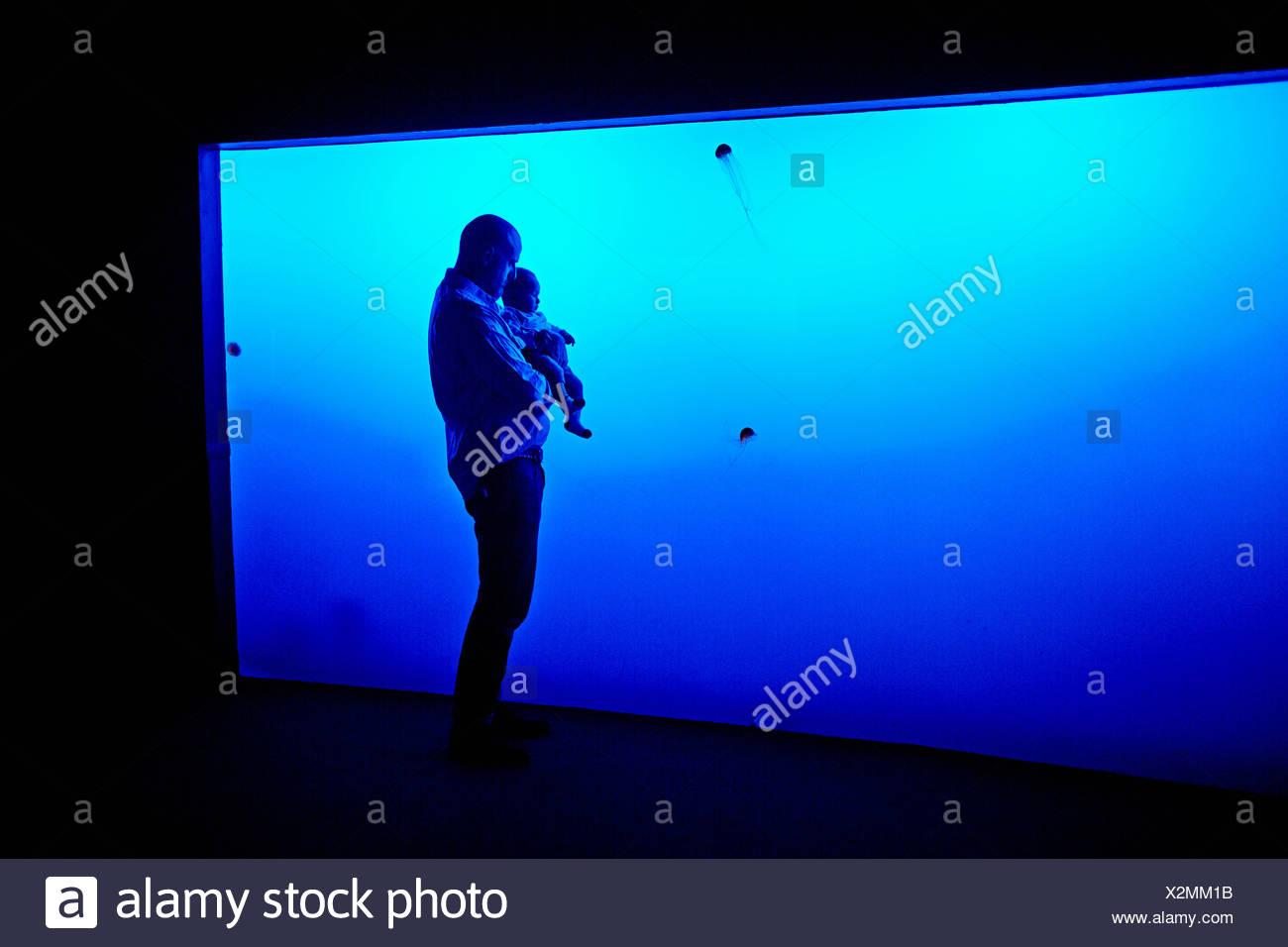 Niedlich Monterey Bay Aquarium Malvorlagen Ideen - Malvorlagen Ideen ...
