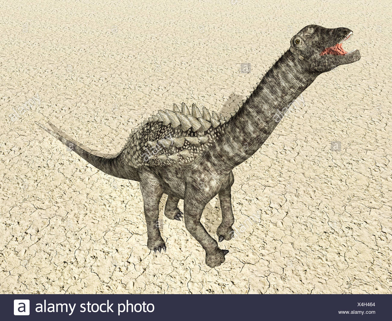 Fein T Rex Dinosaurier Färbung Seite Fotos - Beispiel Wiederaufnahme ...