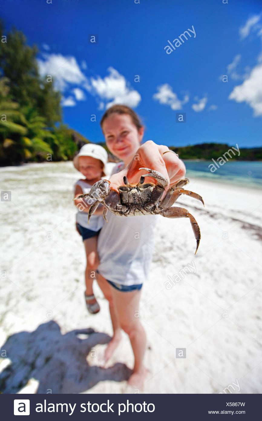 Fein Tropischen Strand Malvorlagen Fotos - Beispiel Business ...