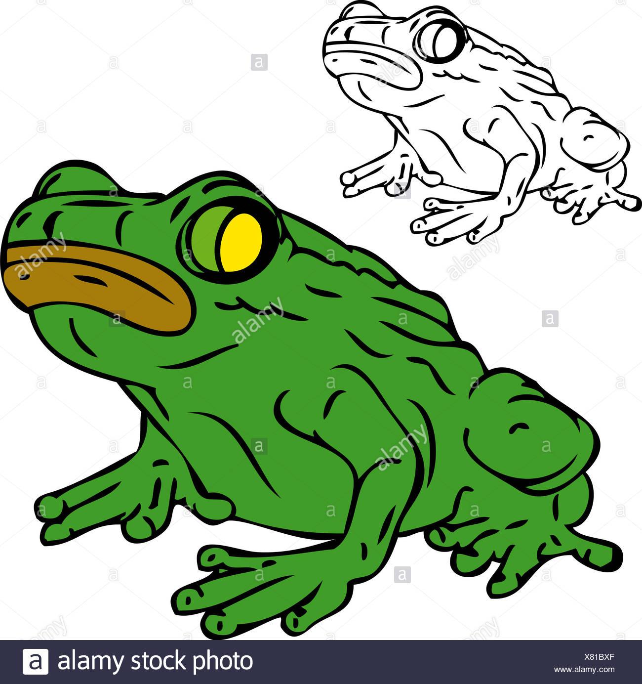 Atemberaubend Verrückte Frosch Malvorlagen Ideen - Malvorlagen Von ...