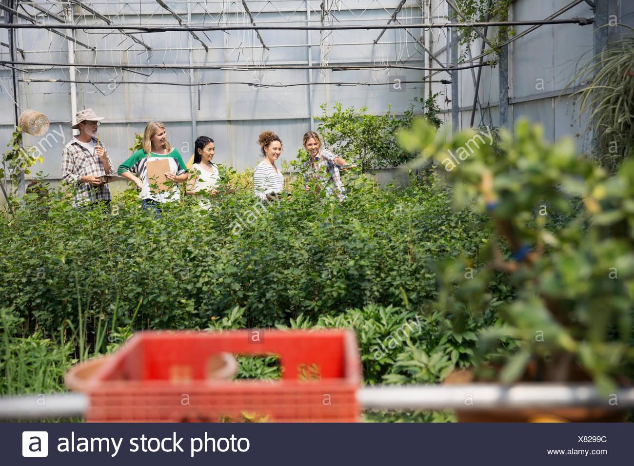 Arbeitnehmer Die Pflanzen Im Gewachshaus Pflanzen Baumschule