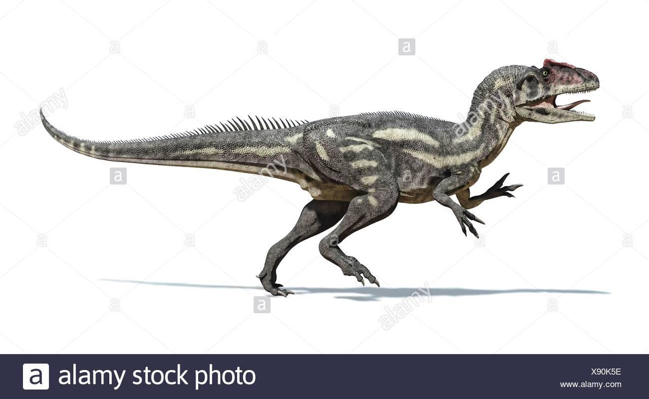 Ausmalbilder Dinosaurier Allosaurus : Ausgezeichnet Allosaurus Malvorlagen Bilder Beispiel