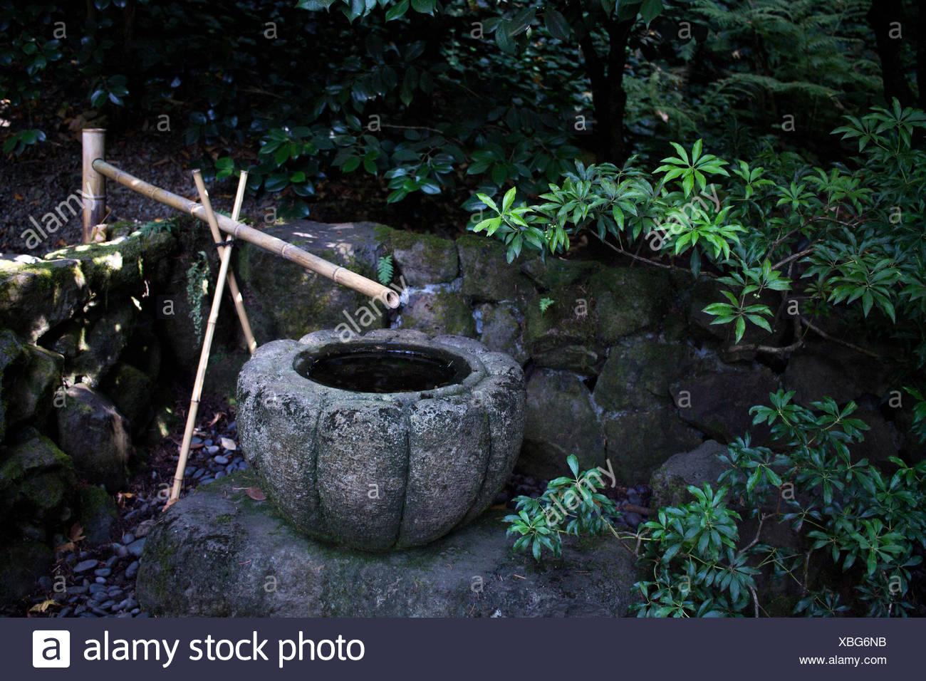 Bambus Brunnen Am Japanischen Garten Stockfoto Bild 282483639 Alamy