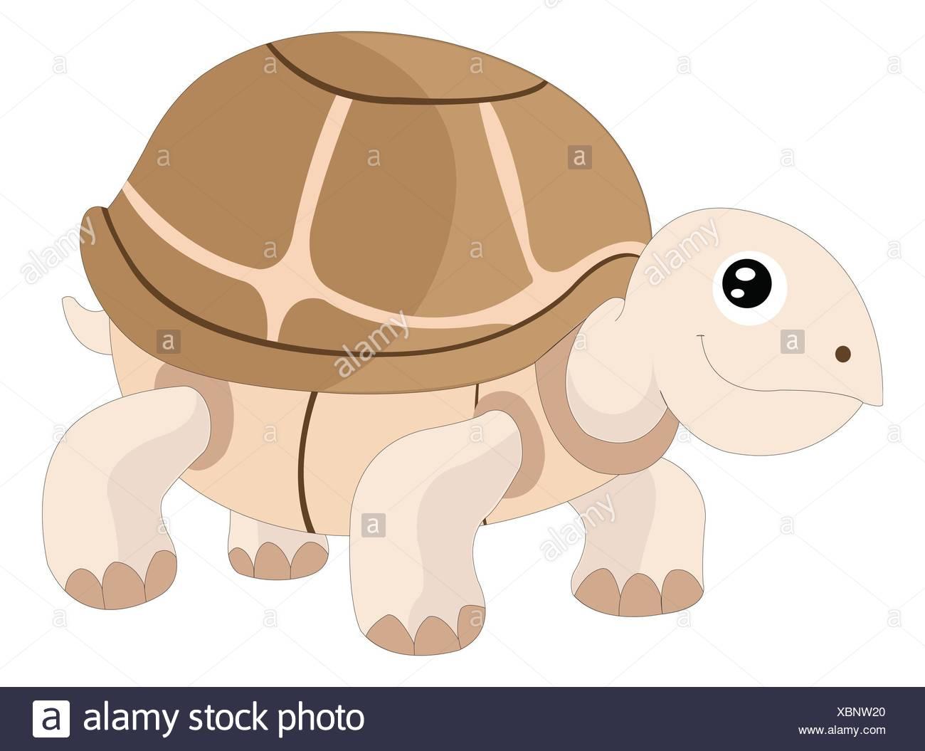 Atemberaubend Süsse Baby Schildkröte Malvorlagen Dragoart Galerie ...