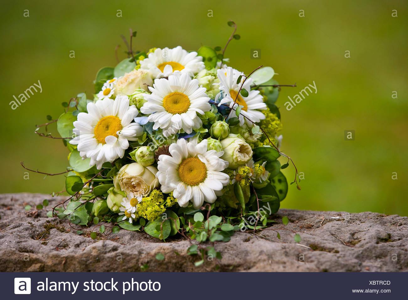 Brautstrauss Mit Ganseblumchen Stockfoto Bild 282672333 Alamy