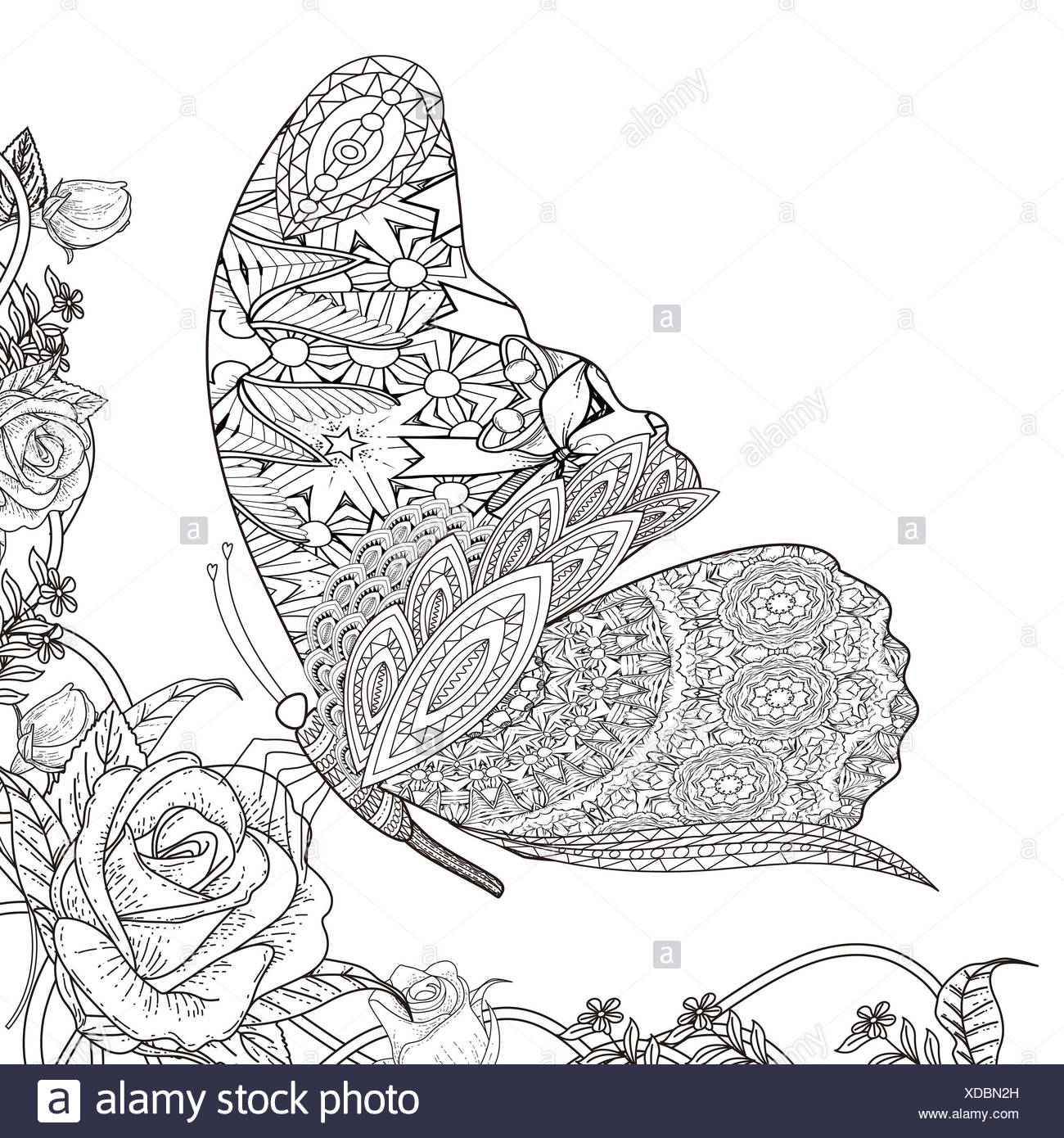 Ausgezeichnet Erweiterte Malvorlagen Schmetterling Ideen - Beispiel ...