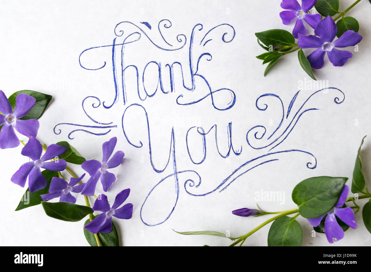 thank you note flowers stock photos amp thank you note