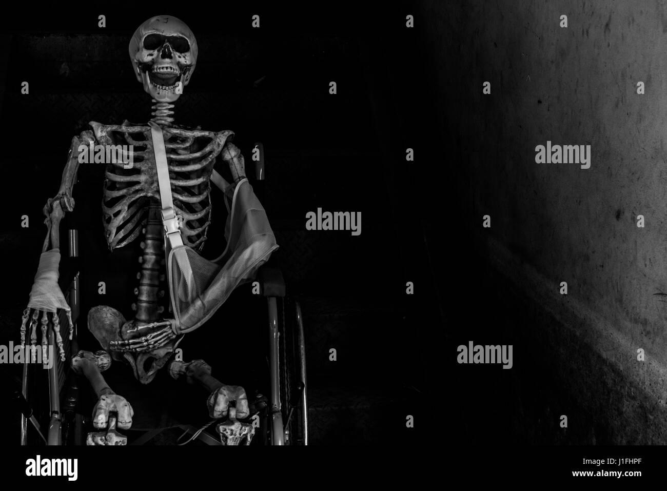 Skeleton Sitting Stock Photos Amp Skeleton Sitting Stock