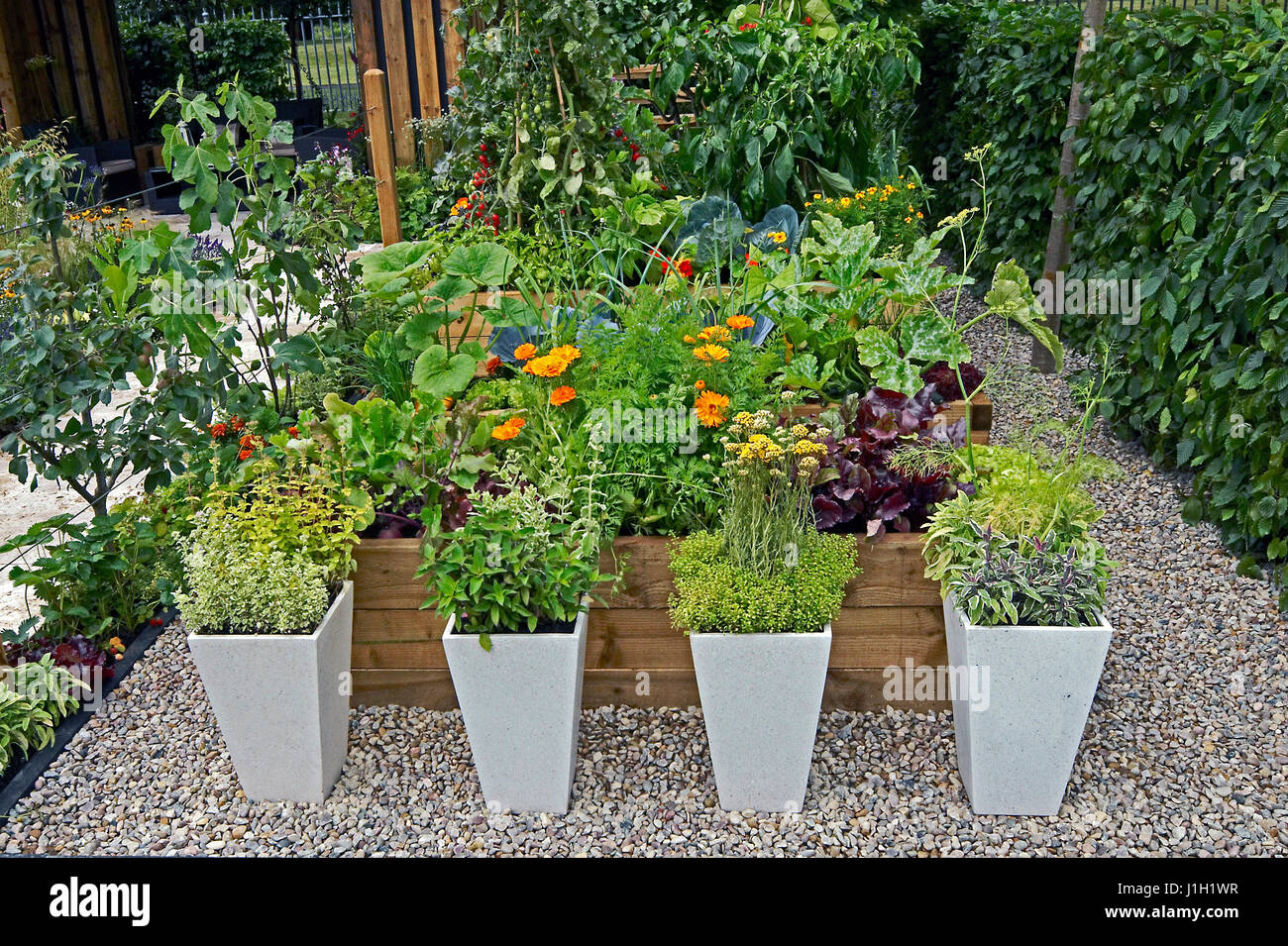 Raised Herb Bed Photos Raised Herb Bed Images Alamy – Decorative Herb Garden