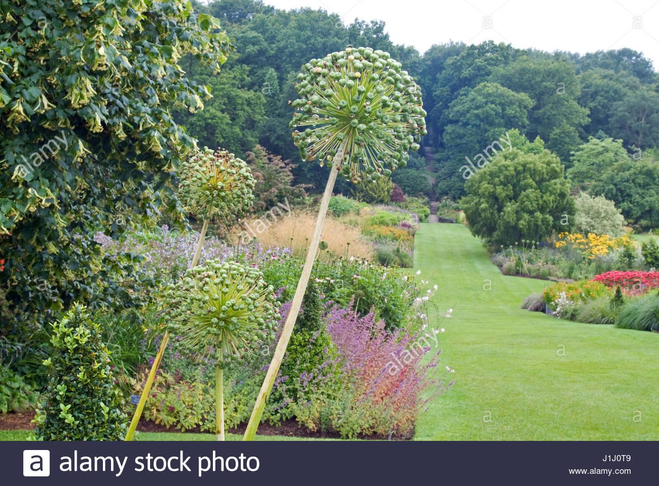 harlow carr garden borders stock photos u0026 harlow carr garden