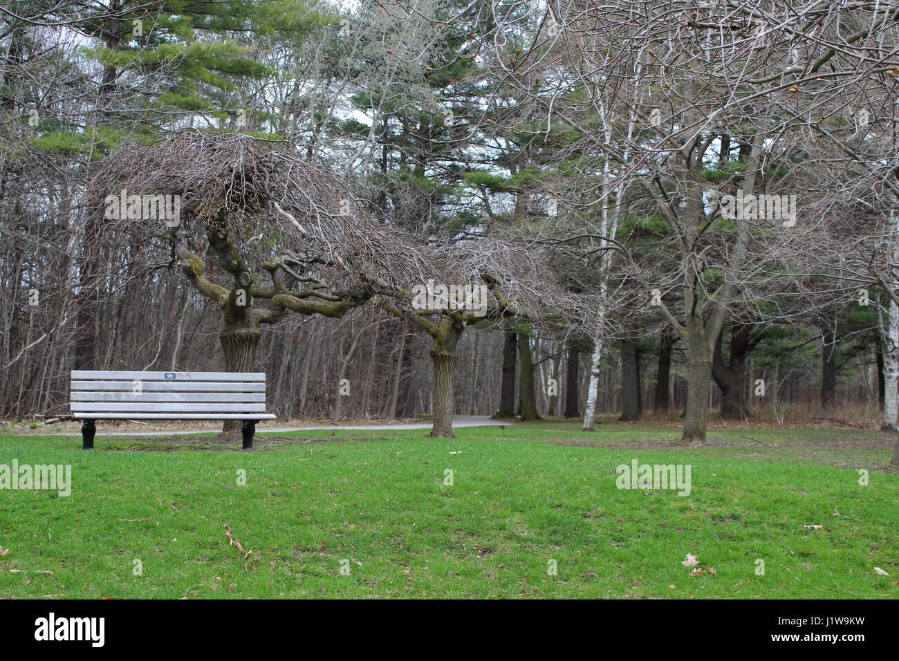 Beanch Stock Photos Amp Beanch Stock Images Alamy