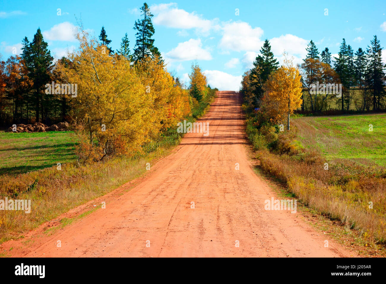the background of prince edward island in canada Princeedwardislandca is the official website of the province of prince edward island learn about prince edward island and government services available to residents and business.