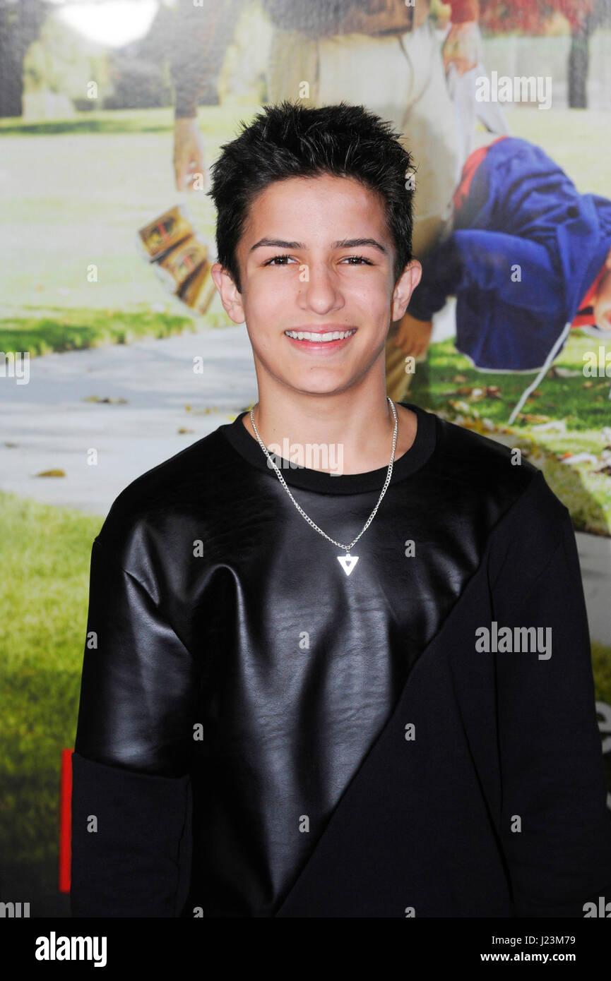 Aramis Knight A K A Bean So Cute: Aramis Stock Photos & Aramis Stock Images