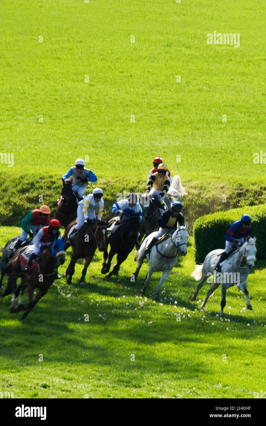Steeplechase race stock photos steeplechase race stock for Steeplechase