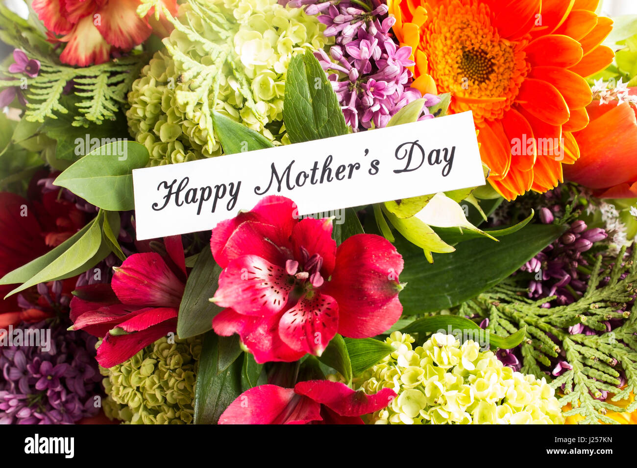 happy mothers day card flowers stock photos  happy mothers day, Natural flower