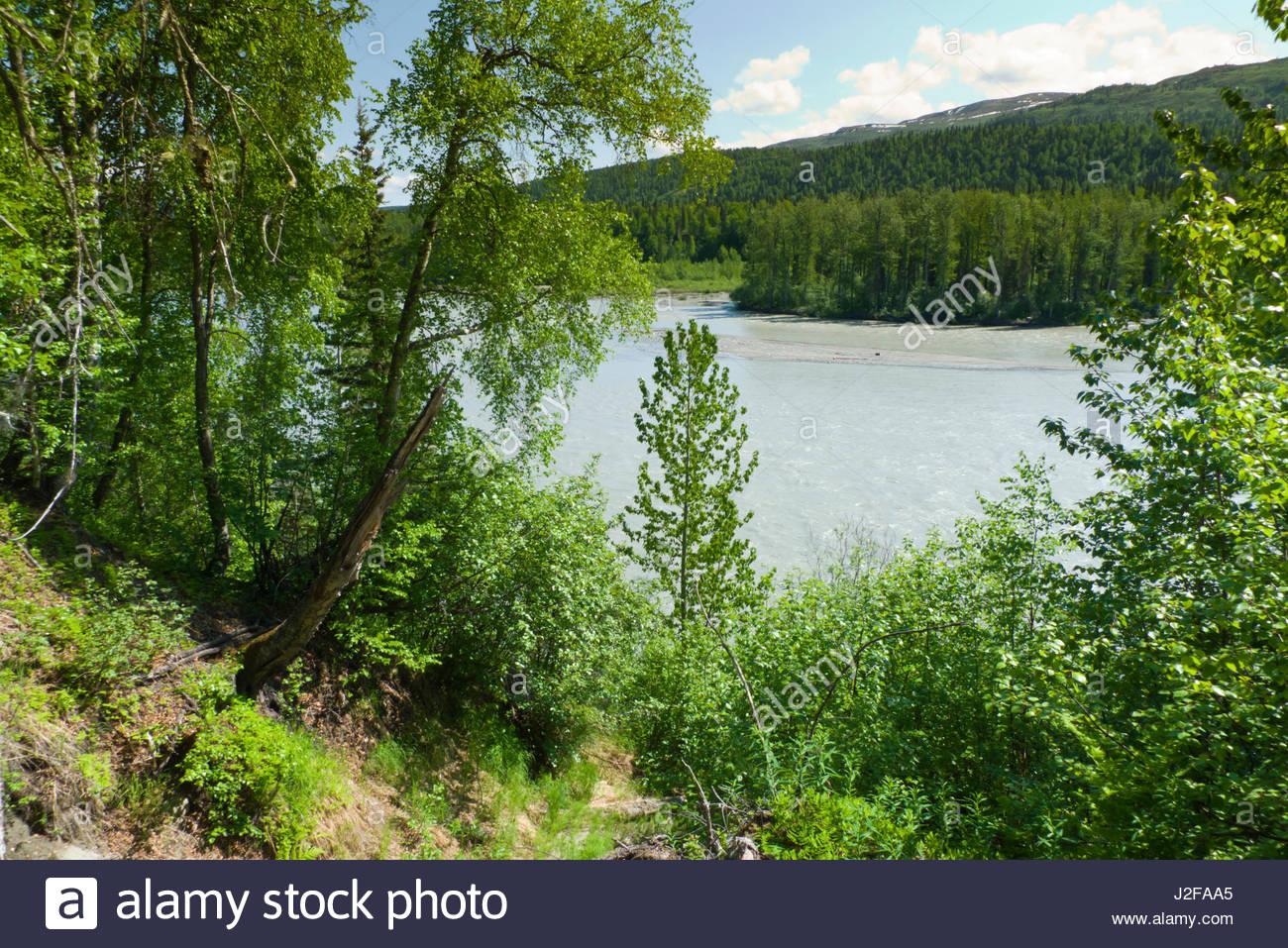 Alaska matanuska susitna county talkeetna - Susitna River Talkeetna Mountains Matanuska Susitna Borough Alaska Usa Stock