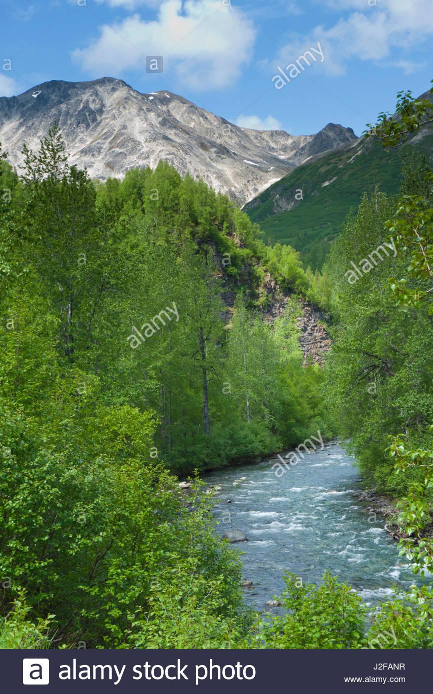 Alaska matanuska susitna county talkeetna - Indian River Talkeetna Mountains Matanuska Susitna Borough Alaska Usa Stock