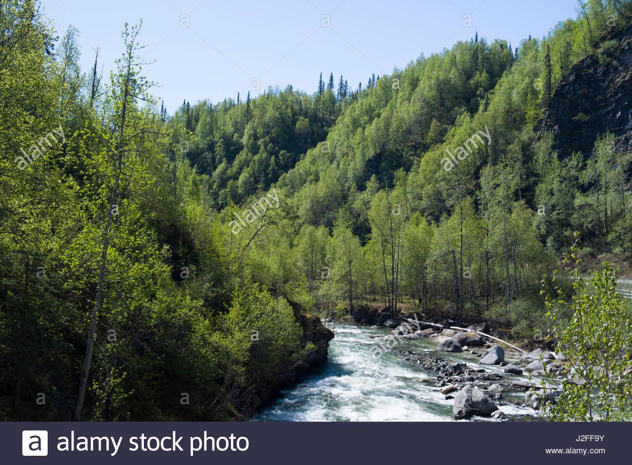 Alaska matanuska susitna county talkeetna - Indian River Matanuska Susitna Borough Alaska Usa Stock Image