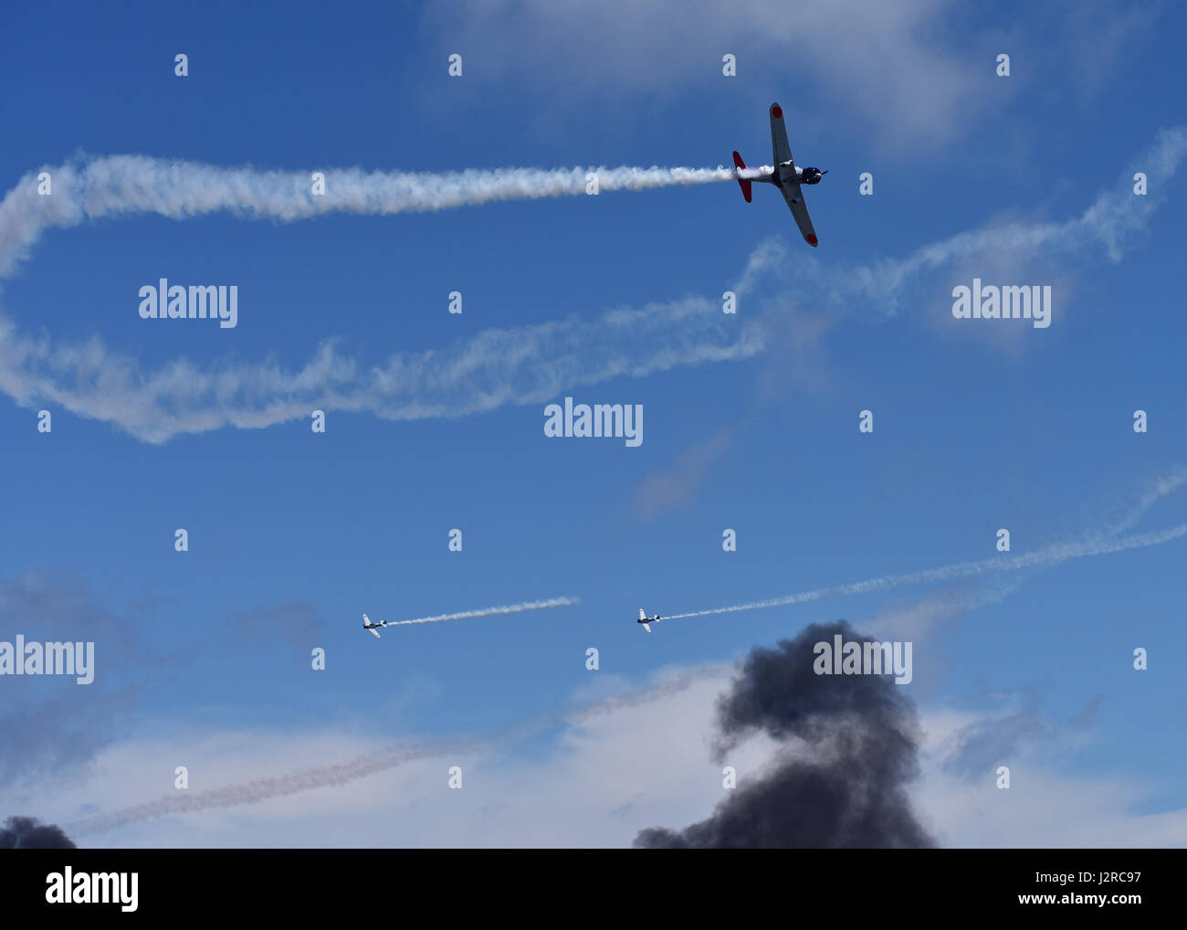 tora tora tora essay Tora tora  essays tora  tora  tora  was the attack code name given to  japanese fighter pilots to use to signal the green light to commanders in prior to  the.
