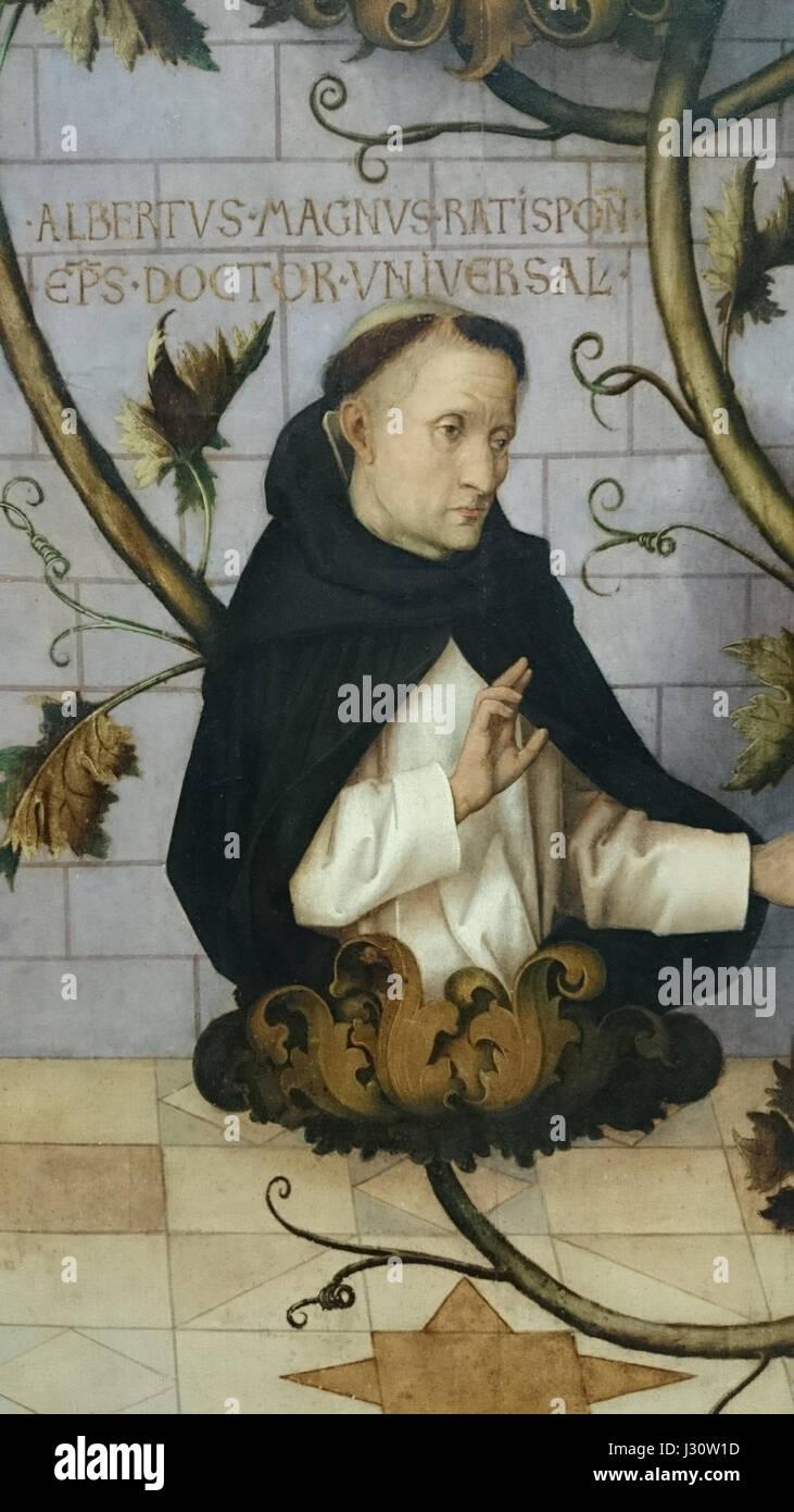 Albertus Magnus Braunschweig albertus magnus stock photos albertus magnus stock images alamy