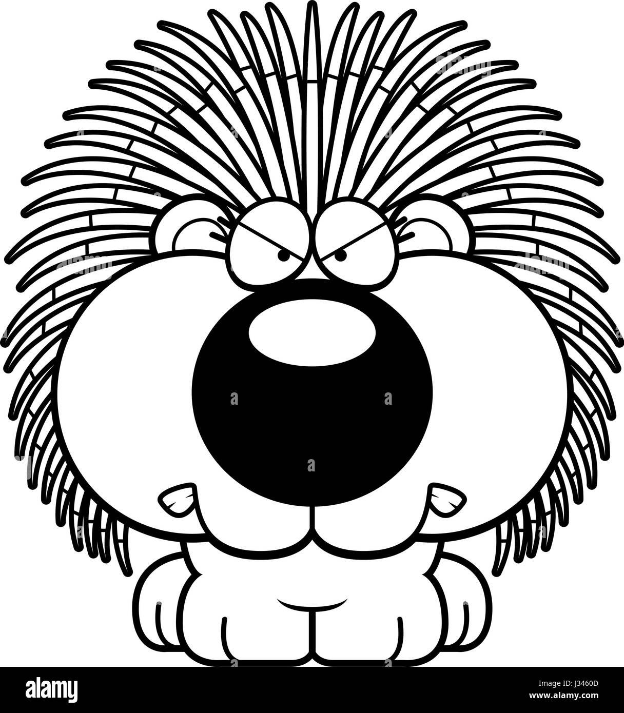 porcupine black and white stock photos u0026 images alamy