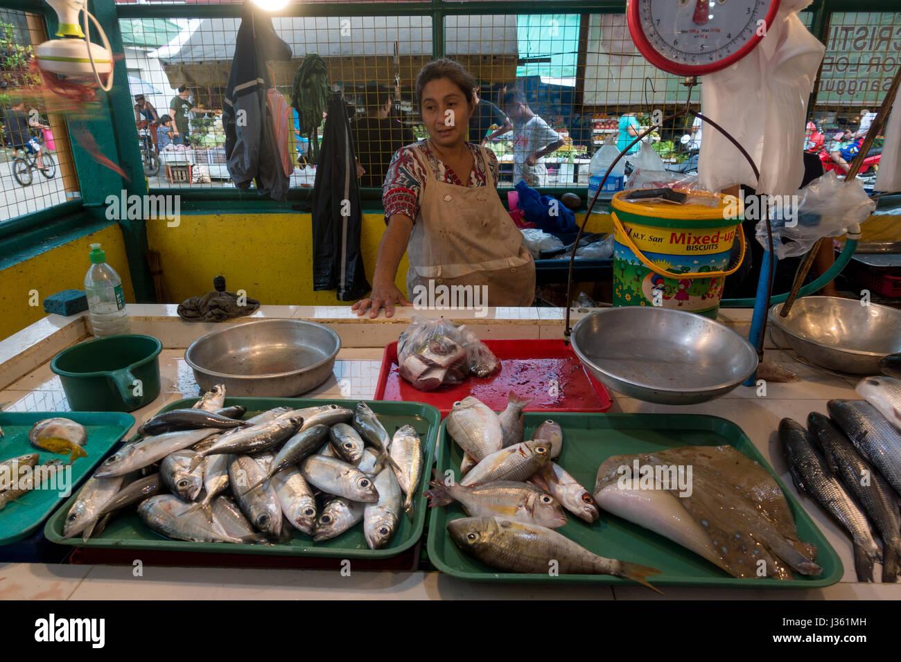 Fish aquarium market in delhi - Polillo Island Philippines April 30 2017 Stingray And Other Fish Displayed For