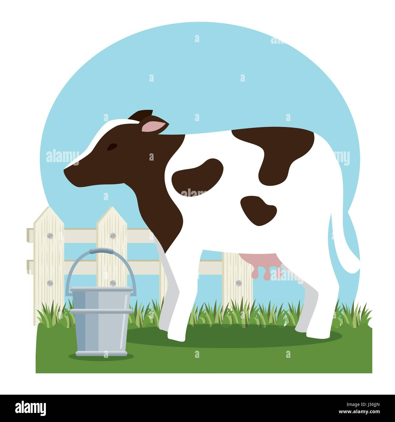 cow farm cut out stock images u0026 pictures alamy
