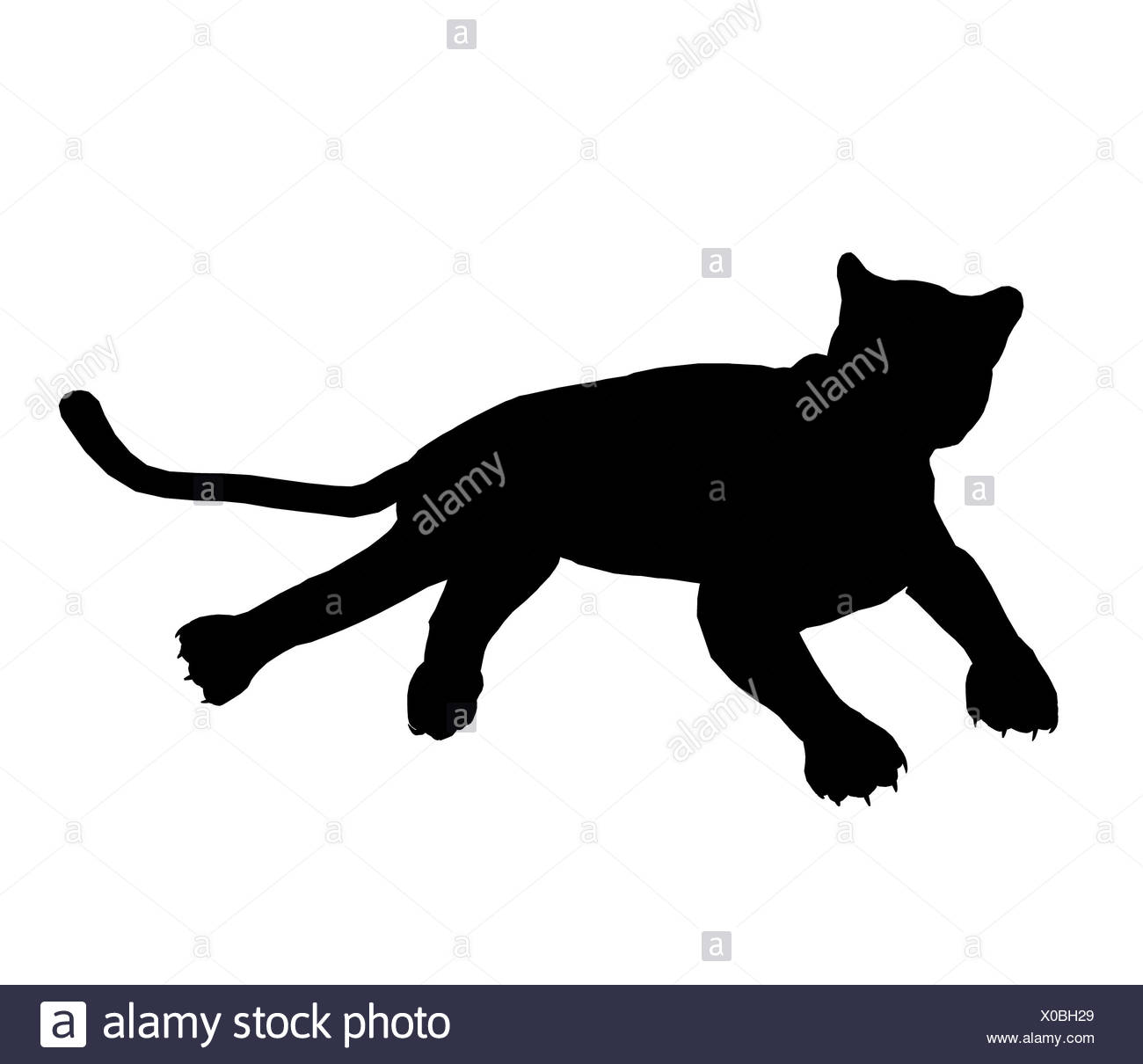 panther illustration silhouette stock photo 275620753 alamy