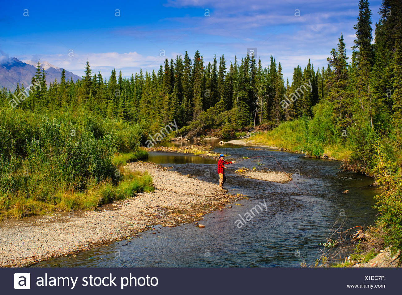 fly creek buddhist singles Carp lake lesbian dating site free online dating & chat in isle of wight  deep  river hispanic single men wolfcreek christian dating site buddhist singles in.