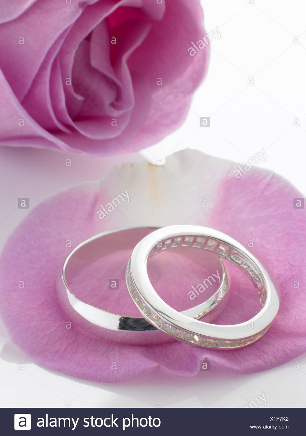 Silver Wedding Rings Resting On Rose Petals Stock Photo: 276315846 ...