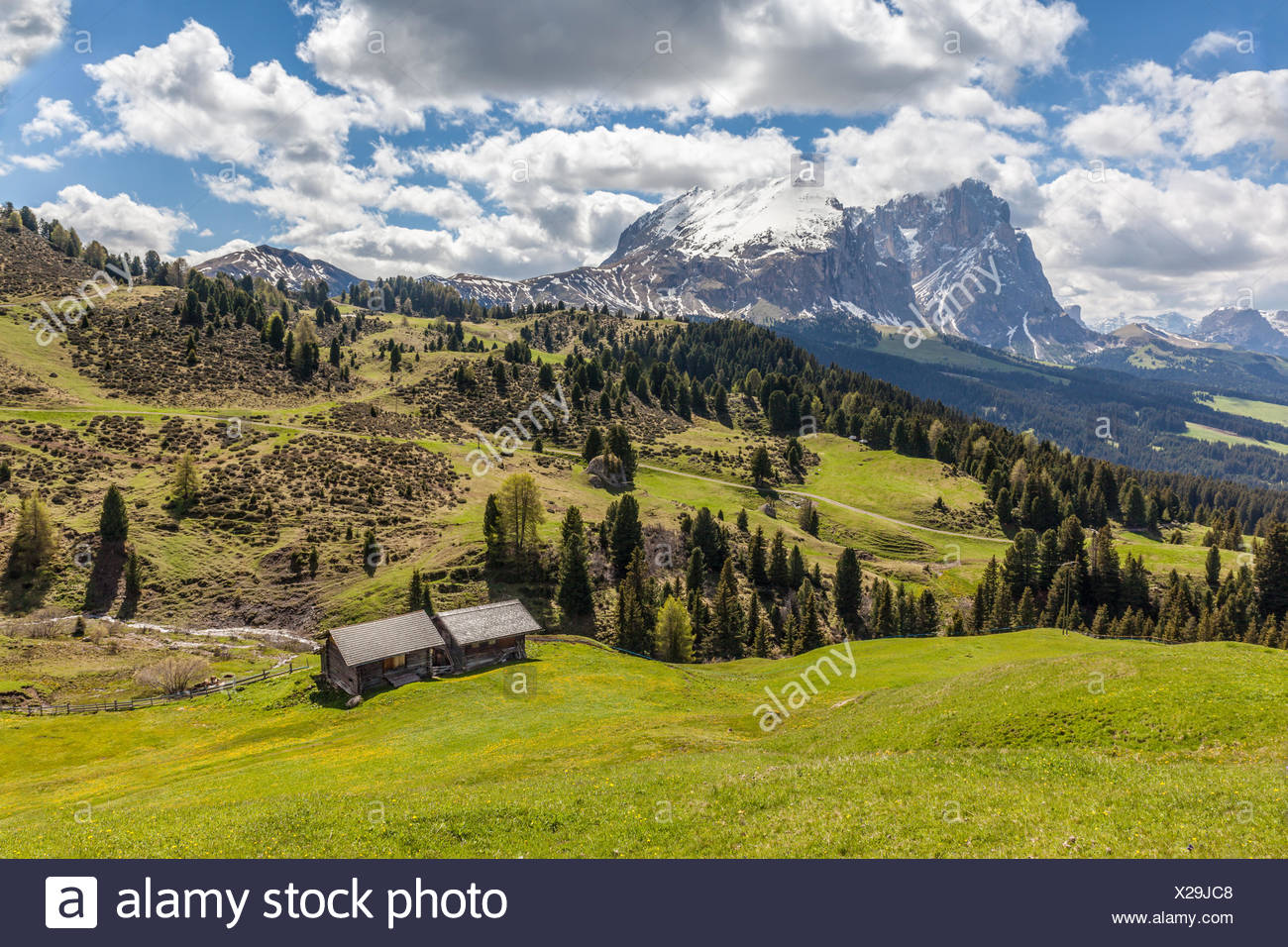 Geography Travel Italy South Tyrol Alm And Alpine Hut On The