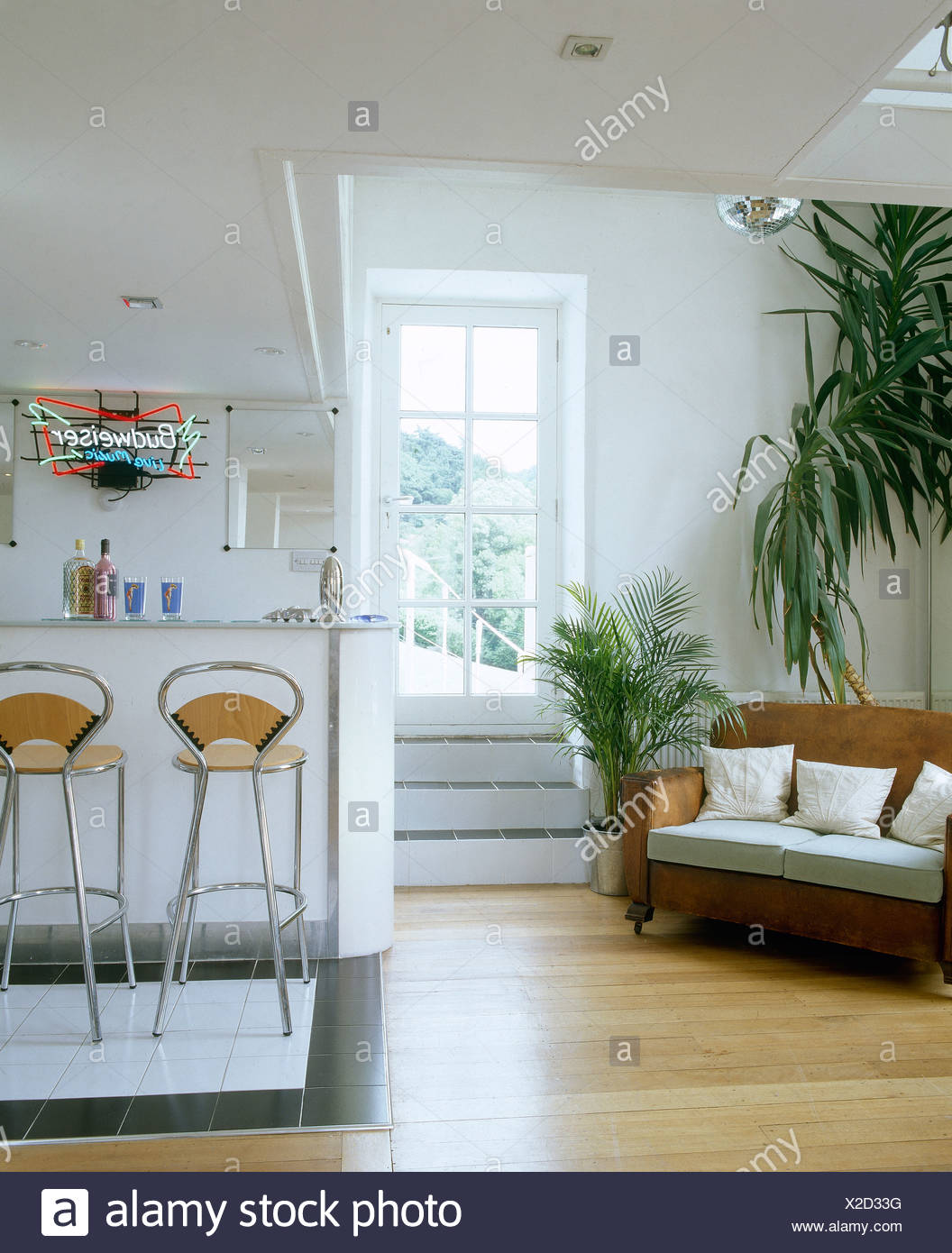 Wooden flooring and tall houseplants beside sofa in modern kitchen ...