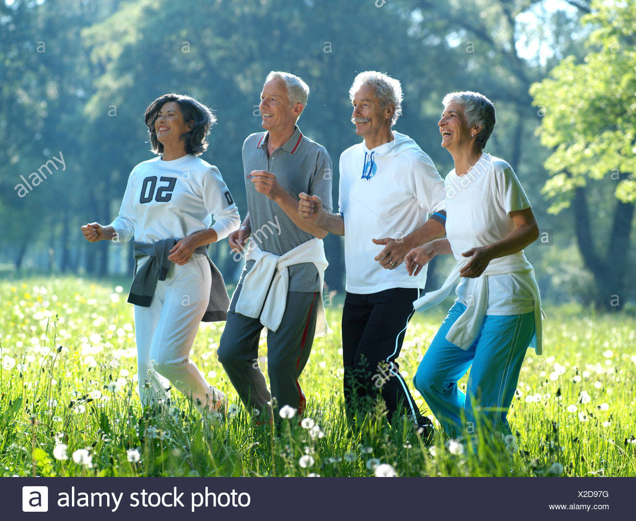 wood lumen senior citizens jog run at the side group group