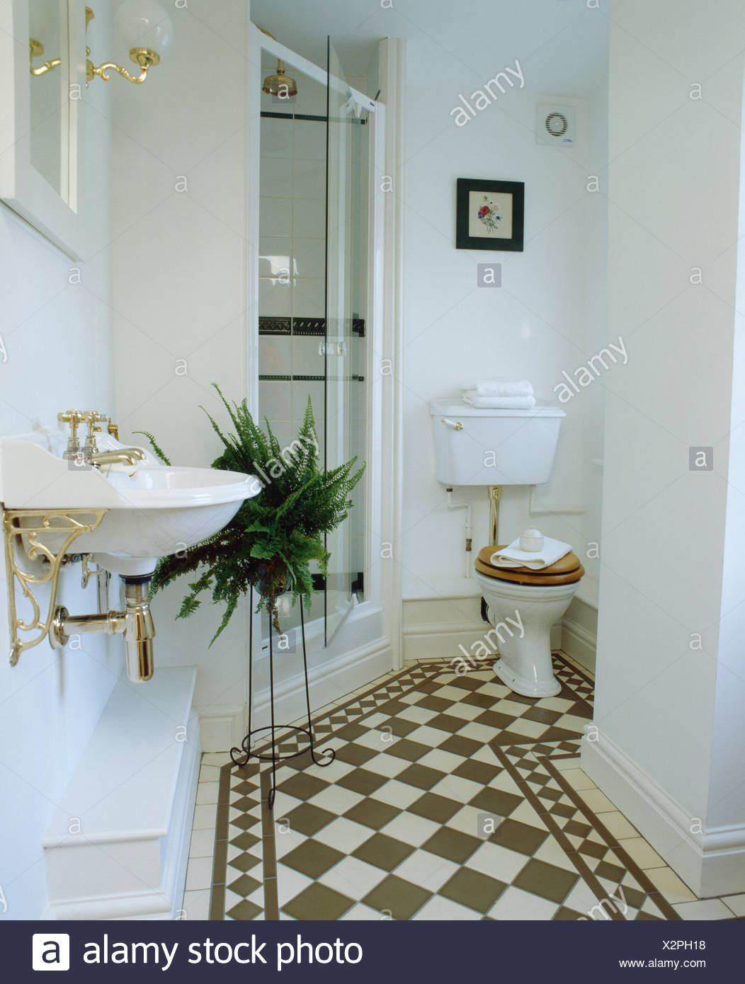 Glass shower doors stock photos glass shower doors stock images blackwhite chequerboard flooring in white bathroom with boston fern on stand beside glass shower planetlyrics Image collections