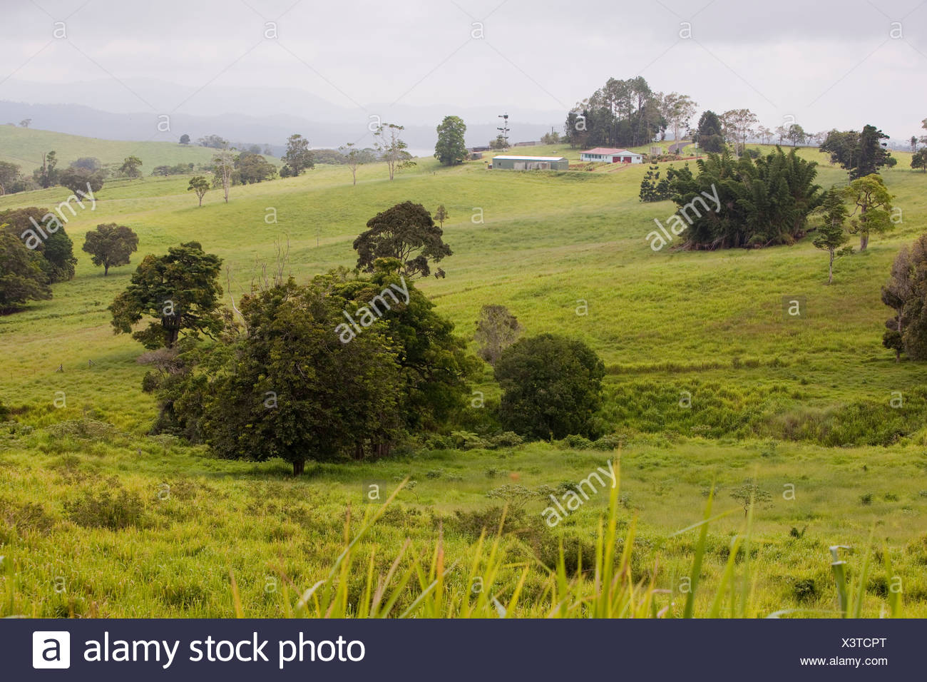 Tablelands stock photos tablelands stock images alamy for The atherton