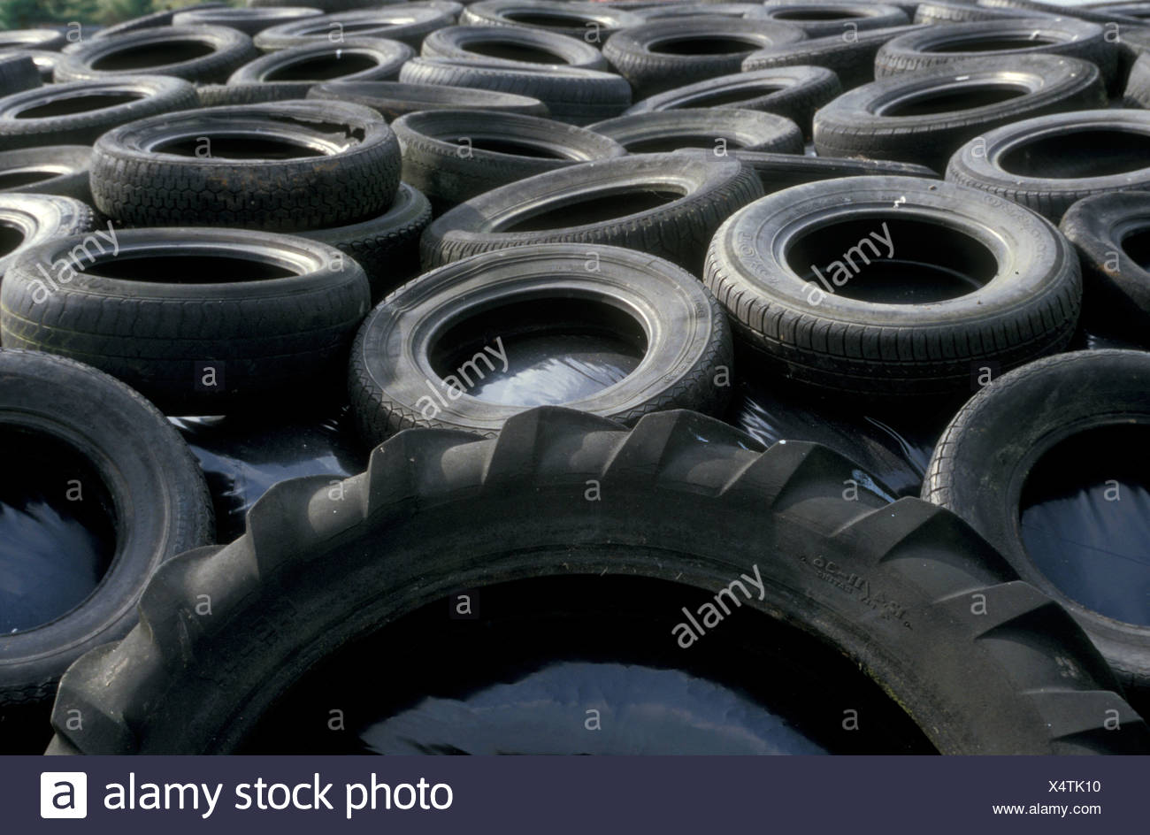 Old Car Tyres Being Used In Farmyard Uk Stock Photo 278366284 Alamy