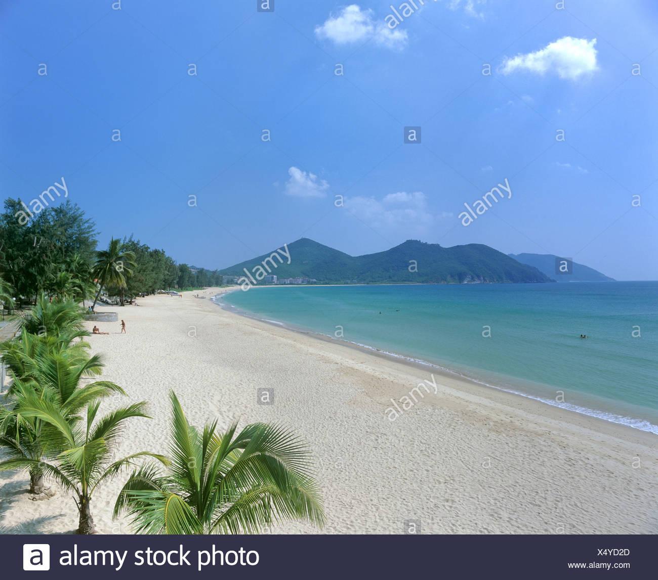 palms on dadonghai beach white sandy beach sanya hainan island