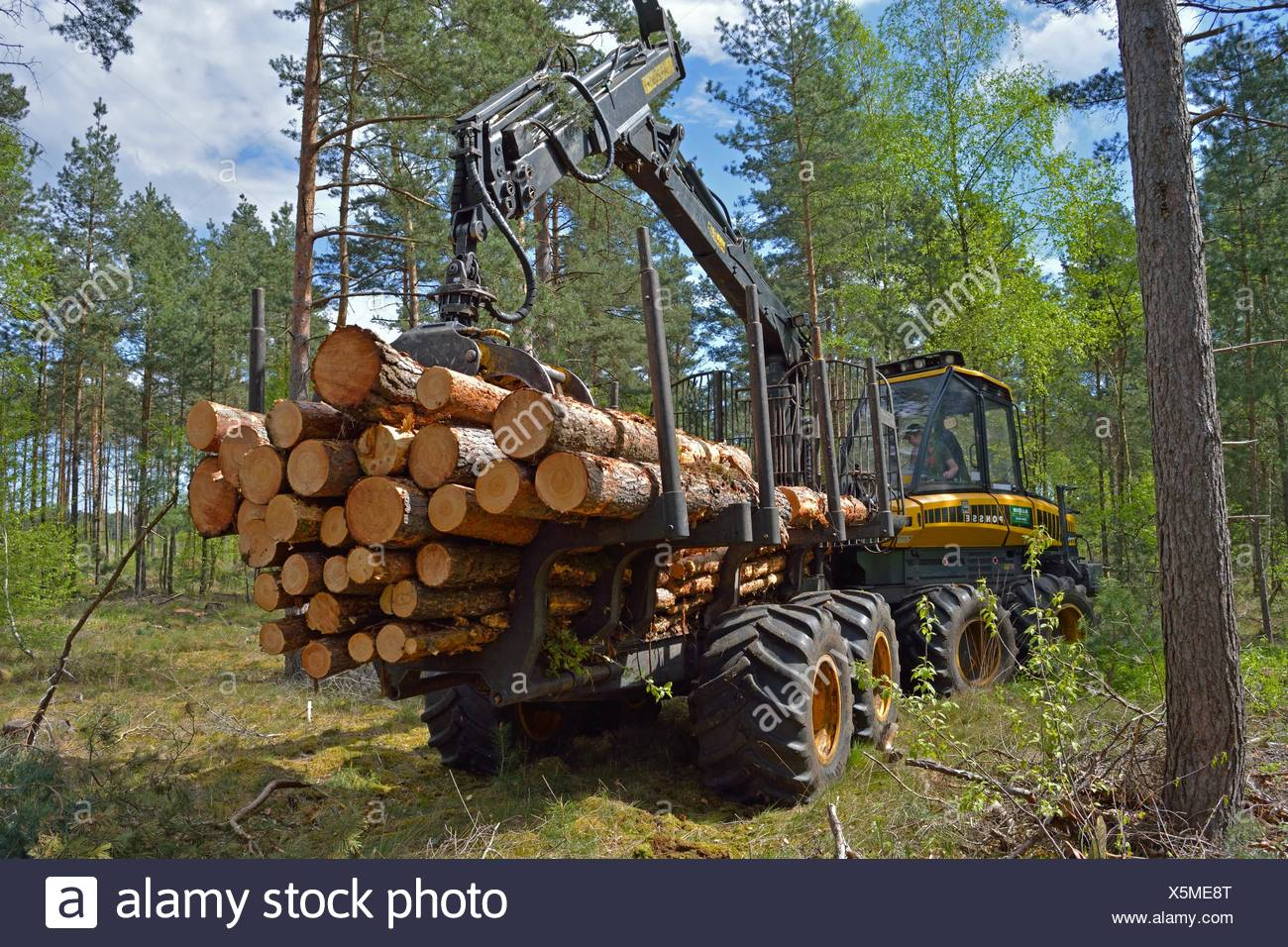 Forwarder Stock Photos Forwarder Stock Images Alamy