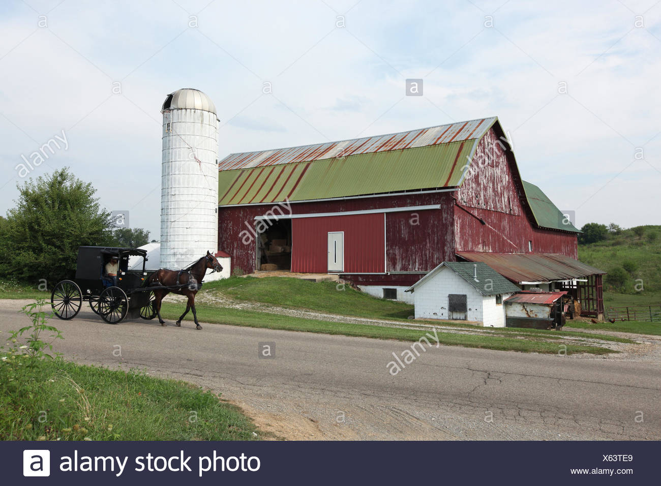 Amish people barn stock photos amish people barn stock images in rural farmland an amish man drives a horse drawn buggy past a barn biocorpaavc Images