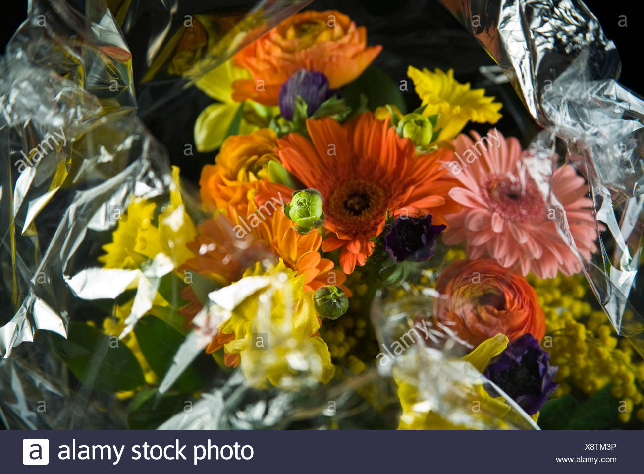 Bouquet Of Flowers Wrapped In Cellophane Stock Photo 280825770 Alamy