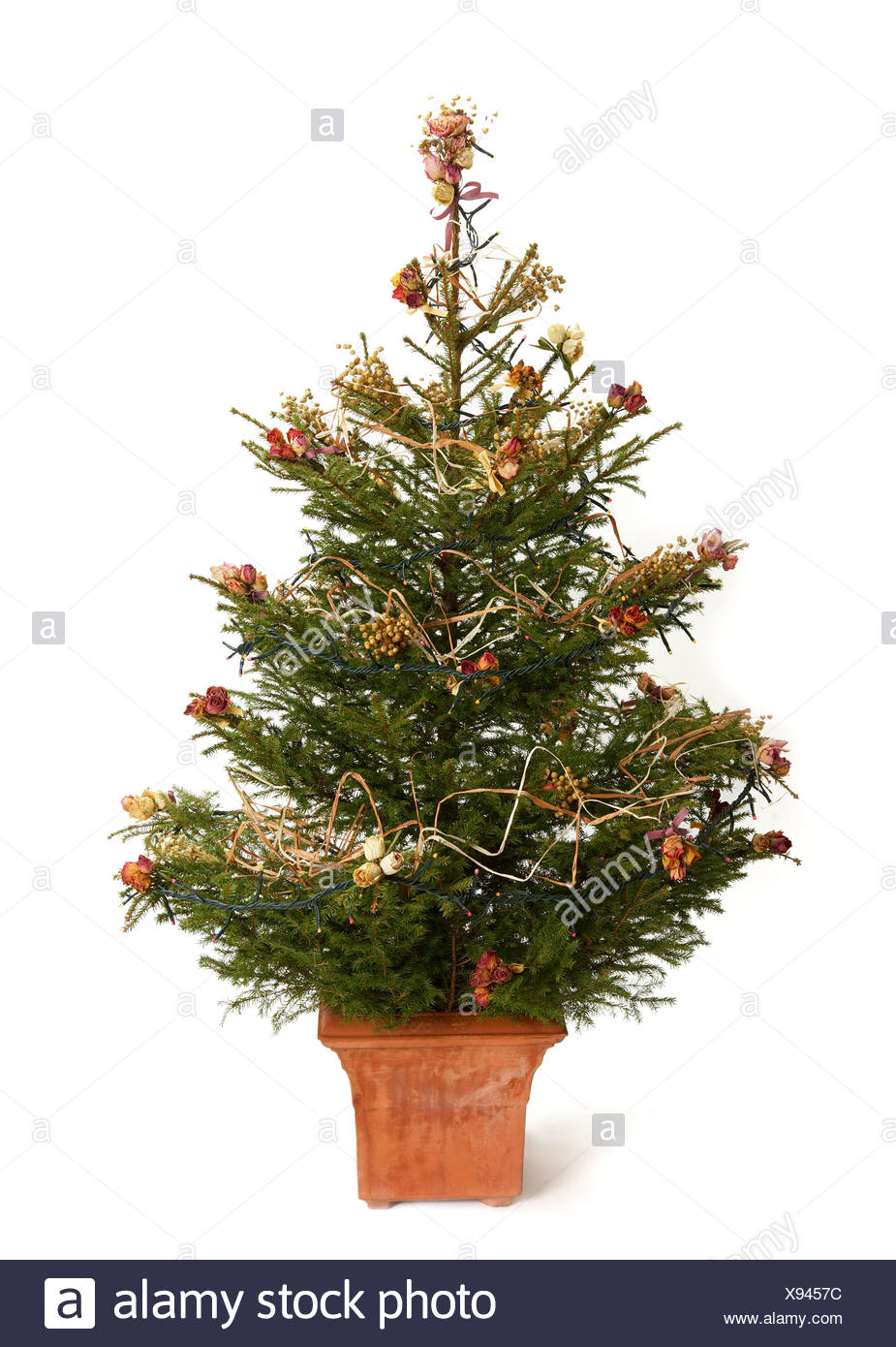 close up of an adorned small christmas tree against white background