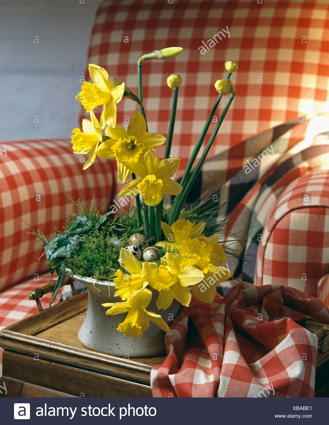 Close up of yellow daffodils in informal easter flower arrangement close up of yellow daffodils in informal easter flower arrangement on red checked armchair mightylinksfo