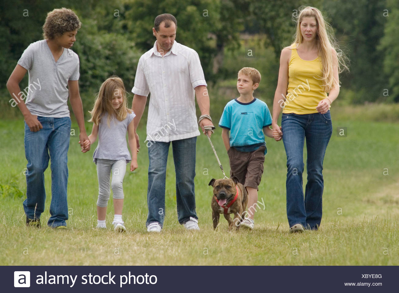 Volunteer Dog Walking Liverpool