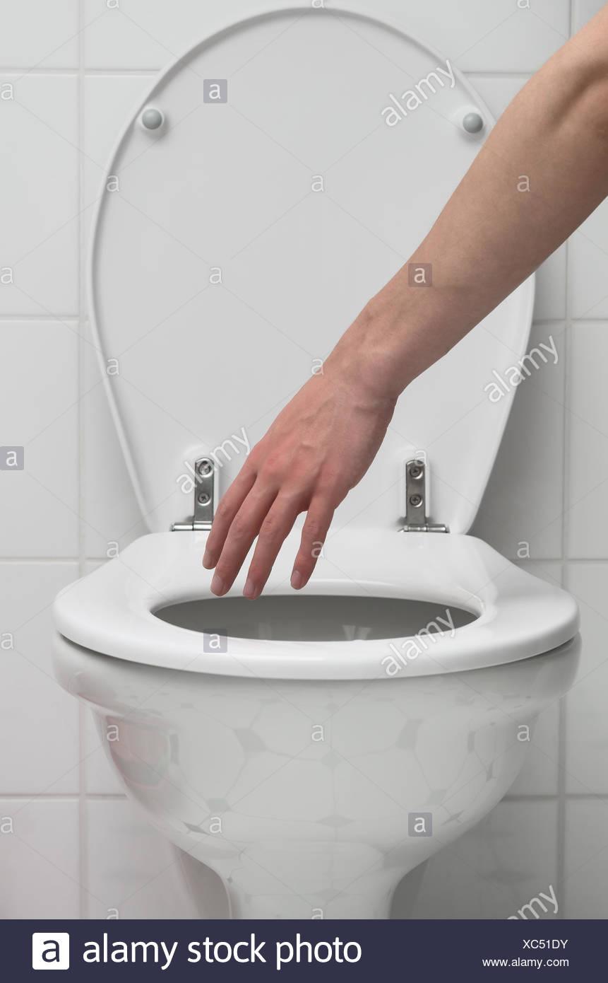 Grasp the toilet Stock Photo: 282852695 - Alamy