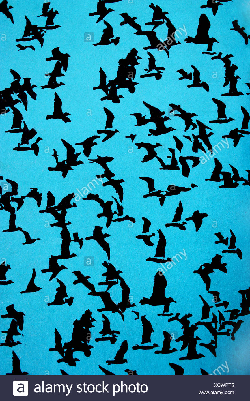 set of black silhouettes of birds on a blue backgr stock photo