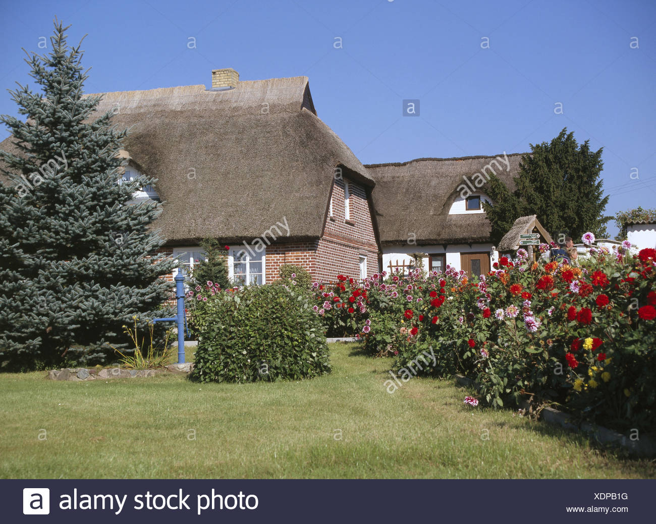 Germany Mecklenburg Western Pomerania Island Reprimands Houses