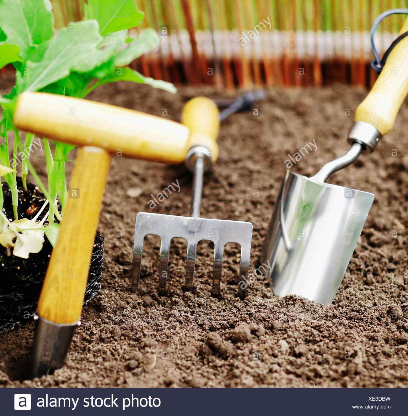 Earth auger stock photos earth auger stock images alamy for Soil utensils