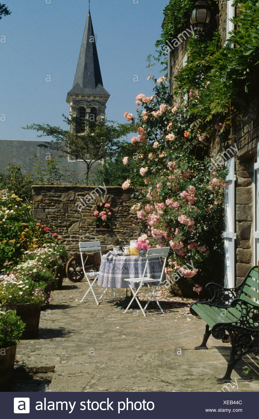 Pink climbing roses on French country house with table and chairs on ...
